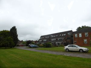 Communal Grounds- click for photo gallery