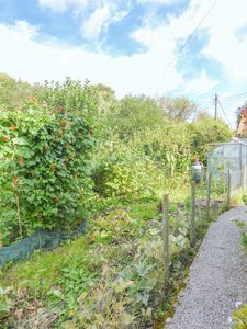 Front Garden - click for photo gallery