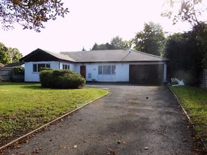 Bungalow To Let in Foxley Lane, Purley