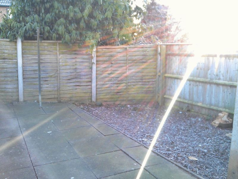Rear Garden - click for photo gallery